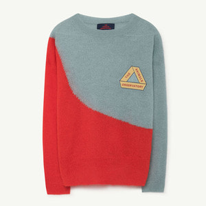Bull Sweater (blue triangle)