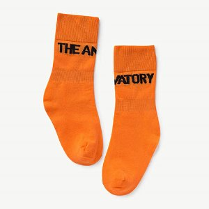 Worm Socks 1097_037 (orange)
